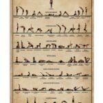 Basic Basic Hatha Yoga Poses Photo