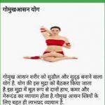 Basic Yoga Asanas In Hindi Picture