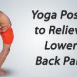 Basic Yoga For Lower Back Pain Ramdev Photos