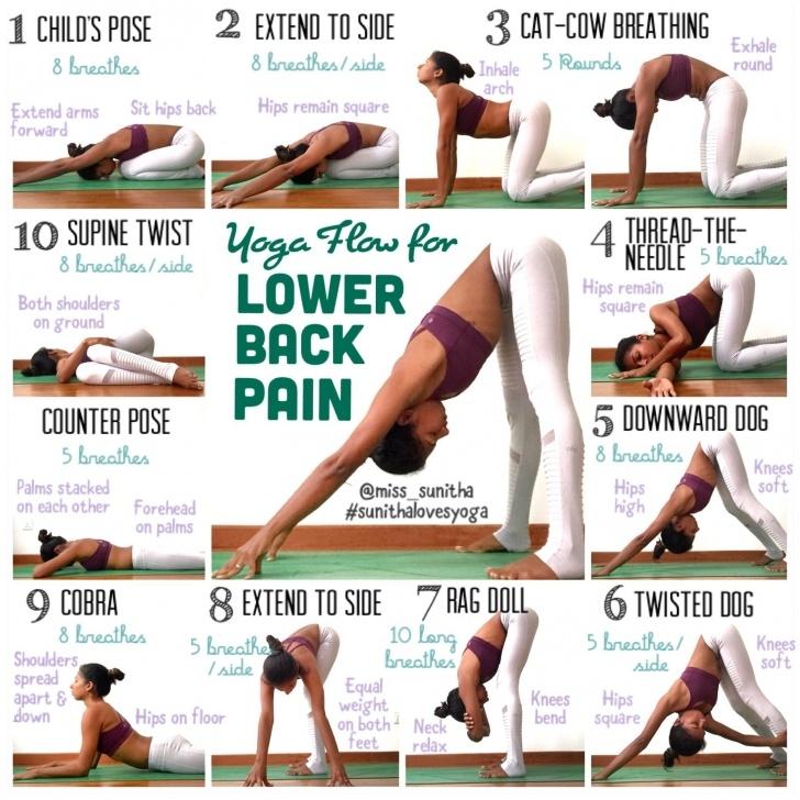 basic yoga lower back pain exercises picture
