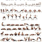 Basic Yoga Pose Vinyasa Images