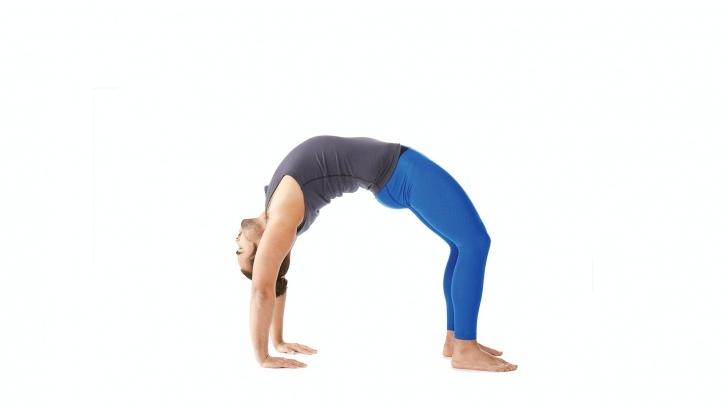basic yoga poses urdhva dhanurasana variations images
