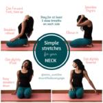Basic Yoga Stretches Neck Images