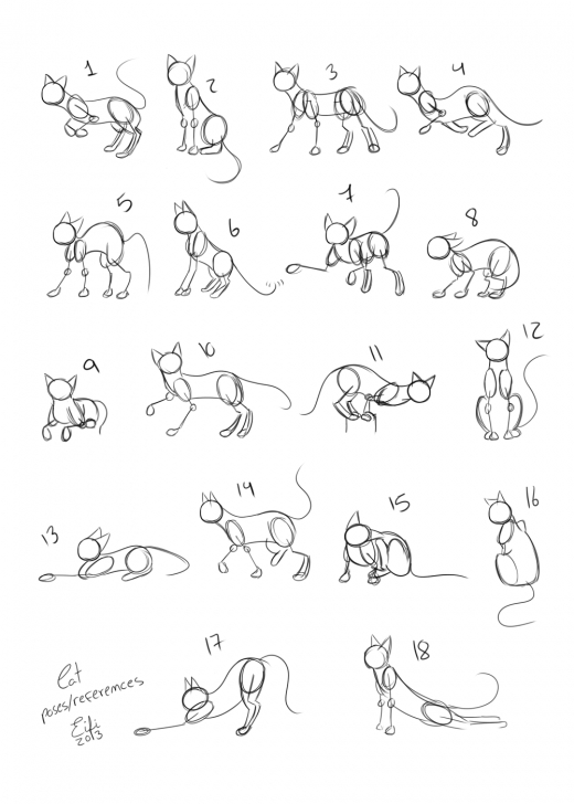 best cat poses reference images