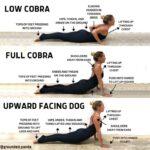 Best Cobra Pose Vs Upward Dog Images