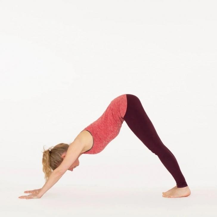 best downward dog yoga position photo