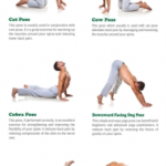 Best Yoga Poses Lower Back Pictures