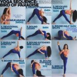 Easy Bird Of Paradise Yoga Sequence Images