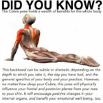 Easy Cobra Pose Benefits Picture