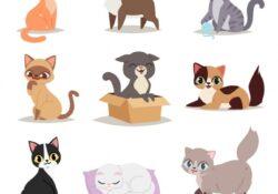 easy cute cat poses photos
