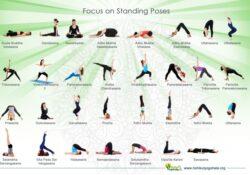 easy yoga poses and their names photos