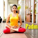 Essential Lotus Pose Meditation Image