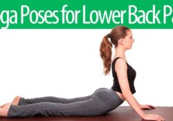 essential yoga for lower back pain beginners picture