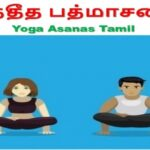 Essential Yoga Poses Dhanurasana Benefits In Tamil Pictures