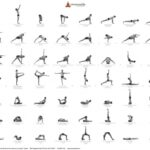 Essential Yoga Sequence Poses Picture