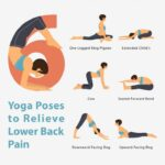 Guide Of Back Pain And Yoga Image