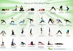 guide of beginner yoga poses names images