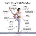 Guide Of Bird Of Paradise Yoga Pose Image