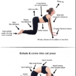 Guide Of Yoga Poses Cat Cow Inhale Exhale Pictures