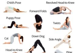 guide of yoga poses for back pain for beginners photo