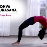 Guide Of Yoga Poses Urdhva Dhanurasana Benefits Image