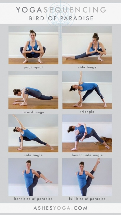 most important bird of paradise yoga sequence images