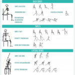 Most Important Chair Yoga Poses For Seniors Photo