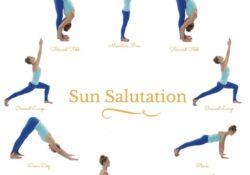 most important sun salutation yoga pose photo
