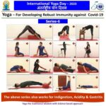 Most Important Yoga Poses For Gastritis Picture