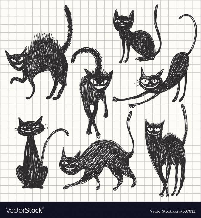 must know black cat poses pictures