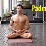 Must Know Lotus Pose Meditation Image