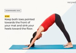 must know yoga poses explained image