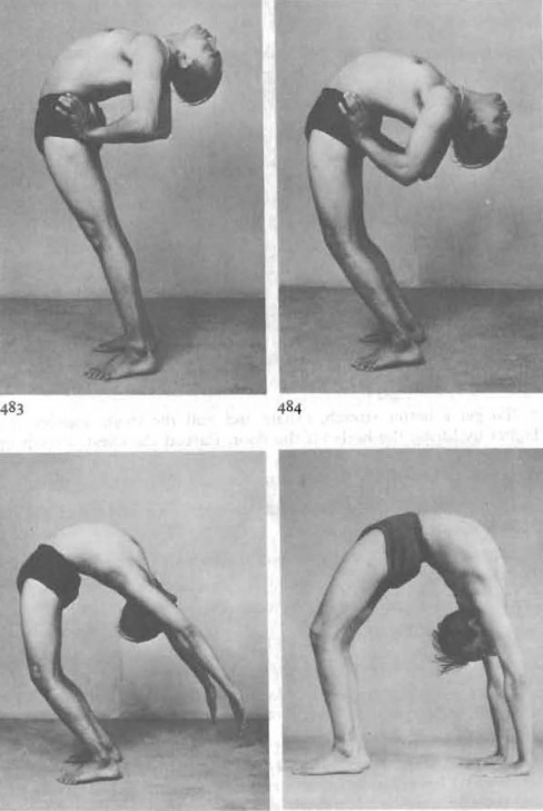 must know yoga poses urdhva dhanurasana iyengar photo
