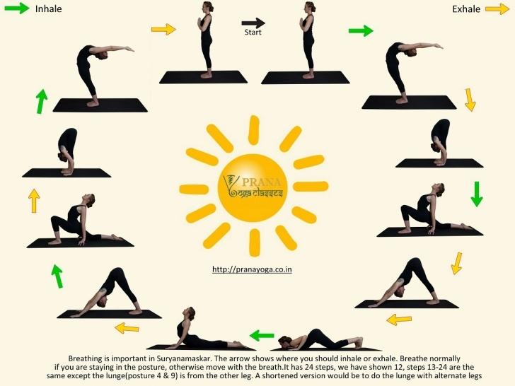 popular sun salutation hatha yoga image