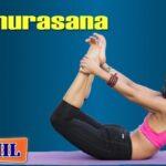Popular Yoga Poses Dhanurasana Benefits In Tamil Photos