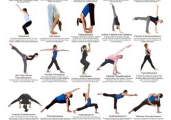 simple yoga asanas names with pictures and benefits image