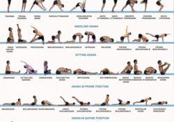 simple yoga asanas photos images