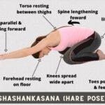 Simple Yoga Asanas Procedure And Benefits Photo