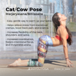 Top Benefits Of Cat Cow Pose Picture