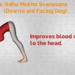 Top Yoga Asanas For Hair Growth Image