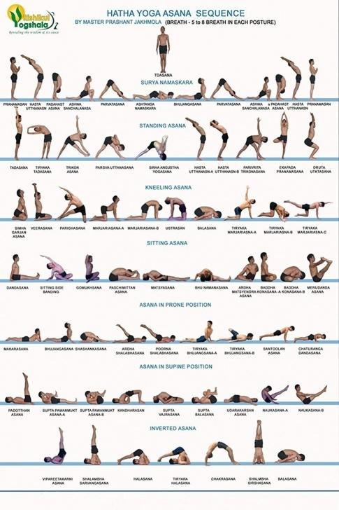 top yoga asanas sequence image