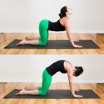 Top Yoga Poses Cat And Cow Pictures